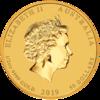 mince Rok Vepře 2019 1/2 Oz - zlato