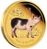 mince Rok Vepře 2019 1 oz Proof – kolorována, zlato